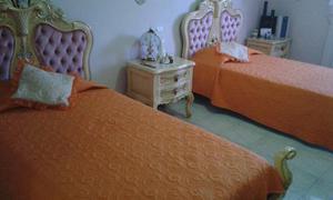 Juego De Dormitorios Doble Camas Individual Estilo Luis Xv