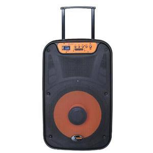Corneta Portatil Ms115blt 2500w Usb Microfono/control Bagc