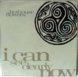Disco 45 Rpm Hothouse Flowers -i Can See Clearly Now
