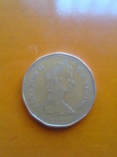 Moneda De Coleccion Año