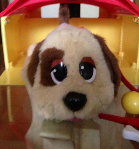 Cachorro Animado Y Casa De Mattel Pound Puppies (Usado)