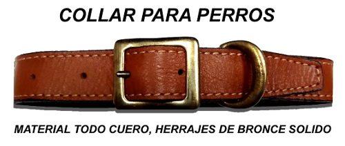 Collar Para Perro- En Cuero- Herrajes Bronce- De Blasi Gunle