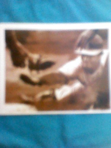 Foto Autografiada De Victor Davalillo Con Cardenales