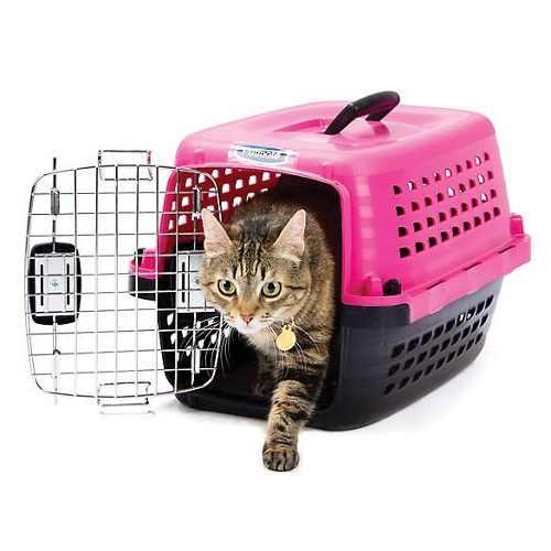Kennel Petmate Compass 50, Perros O Gatos Hasta 4.5 Kilos