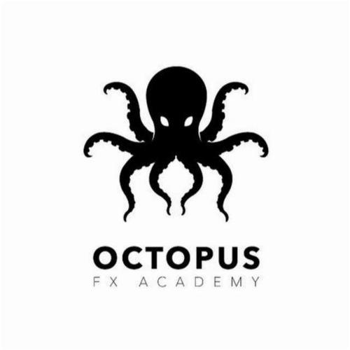 Curso Octopus Profesional De Trading En Forex. 100% Completo