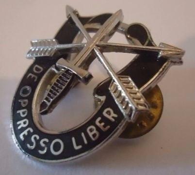 Antigua Insignia De Las Fuerzas Especiales Boinas Verdes !