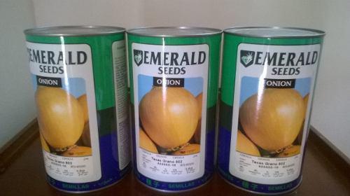Semilla De Cebolla Esmeralda 502
