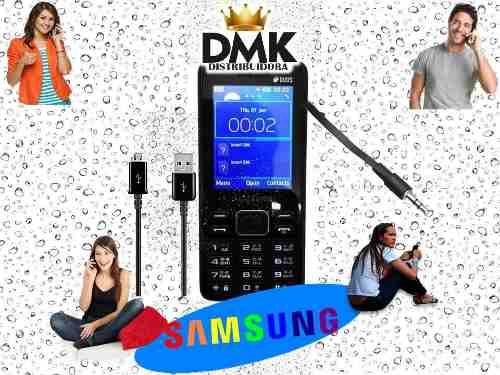 Telefono Celular Samsung B350 Doble Sim Liberado Mp3