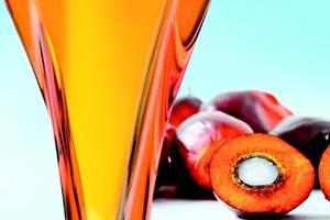 Aceite de palma Aceite de palma cruda y refinado, aceite