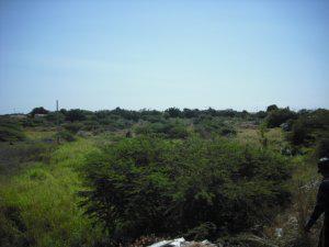 Amplio Terreno en Venta en la zona Norte de Maracaibo