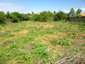 Isla de Margarita Playa el Agua Bajos de el Agua 1000MTS