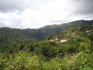 Vendo terreno bosques de la lagunita lote 880 m2 oportunidad