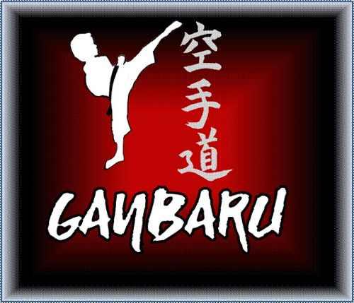 Uniformes De Karate (kimono - Karategui) Liviano Talla 8
