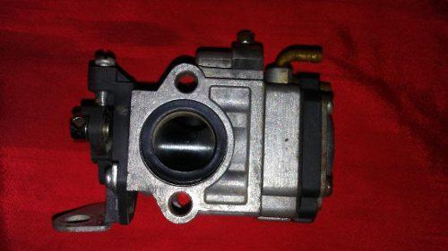 Carburador Desmalezadora Domopower