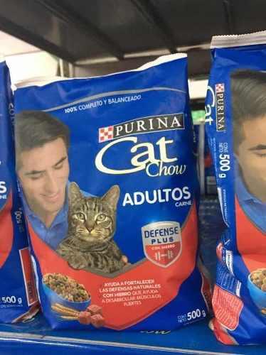 Comida Para Gatos Cat Chow Purina