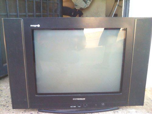 Televisor 21 Pulgadas Ceiberlux Pantalla Plana