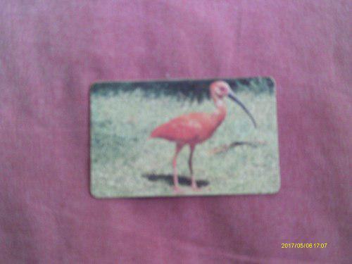 Tarjeta Cantv Aves De Venezuela.