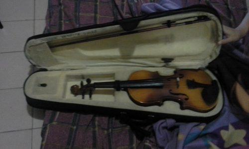 Venta De Violin Importado