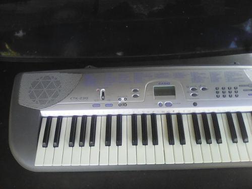 Piano Teclado Casio Ctk 230 En Perfecto Estado Con Su Cargad