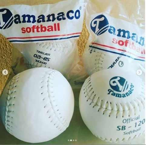 Pelota De Softball Tamanaco Sb 120