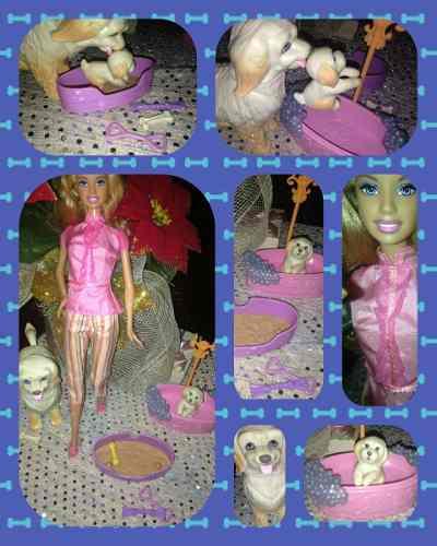 Barbie Y Juego De Diversión Para Mascotas!! Oportunidad
