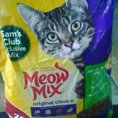 Comida Para Gatos Y Perros