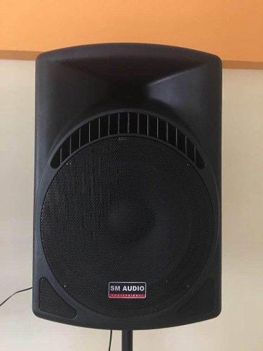 Corneta Amplificada 15 Pulgada Sm Audio Profesional