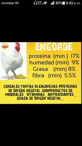 Venta De Alimento Para Pollo,cochino,gallinas Ponedoras