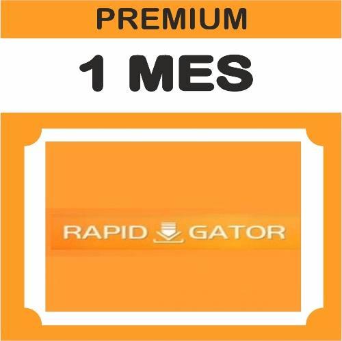 Cuentas Premium Rapidgator 1 Mes Oficial 500gb Envío Gratis