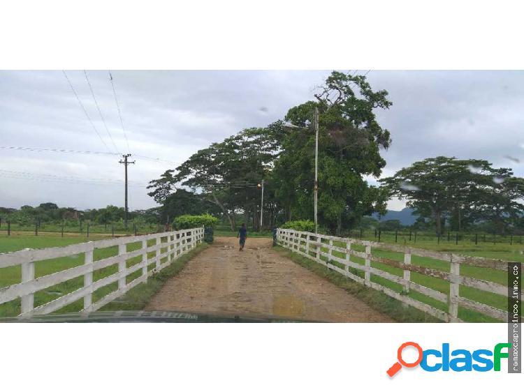 Finca en Campeche vía Yaracal Edo Falcón