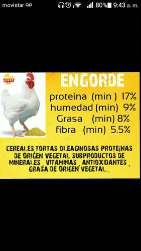 Venta De Alimento Para Pollo,cochino,