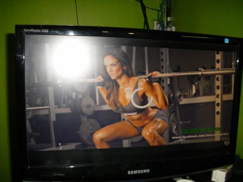 Monitor Lcd Samsung Sync Master 22 Pulgadas Modelo sn