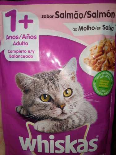 Whiskas Alimento Para Gatos Y Gatitos