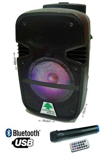 Corneta Amplificada Karaoke Bluetooth 8 Pulg Tienda Chacao