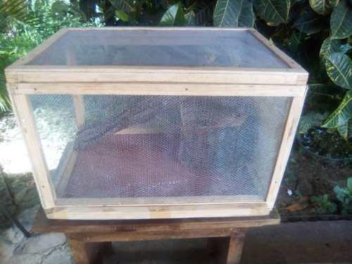 Casas Tipo Kennel Para Mascotas Cobayos, Erizos, Hamster.etc