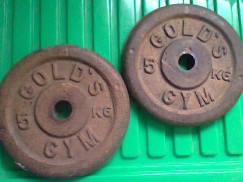 Discos De Pesas Gold Gym 5kgs 2x12verdes
