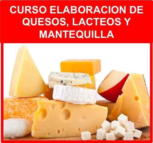 Curso Manual Hacer Quesos Quesería Mantequilla Yogur Suero