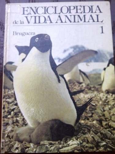 Libro Enciclopedia De La Vida Animal 1