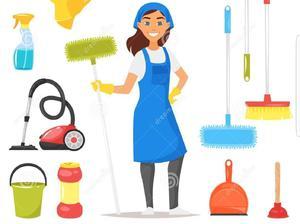 Servicio de Limpieza Diaria Casa, Apartamento, Oficinas