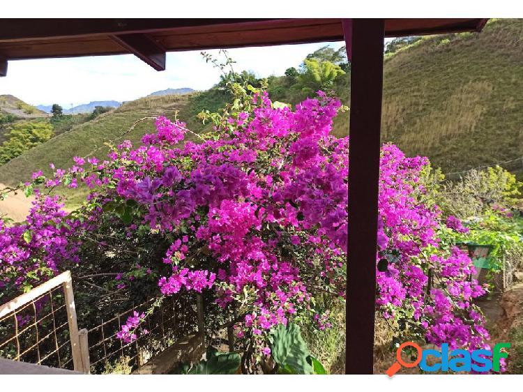 Agradable Apto-Anexo en Bosques de La Lagunita