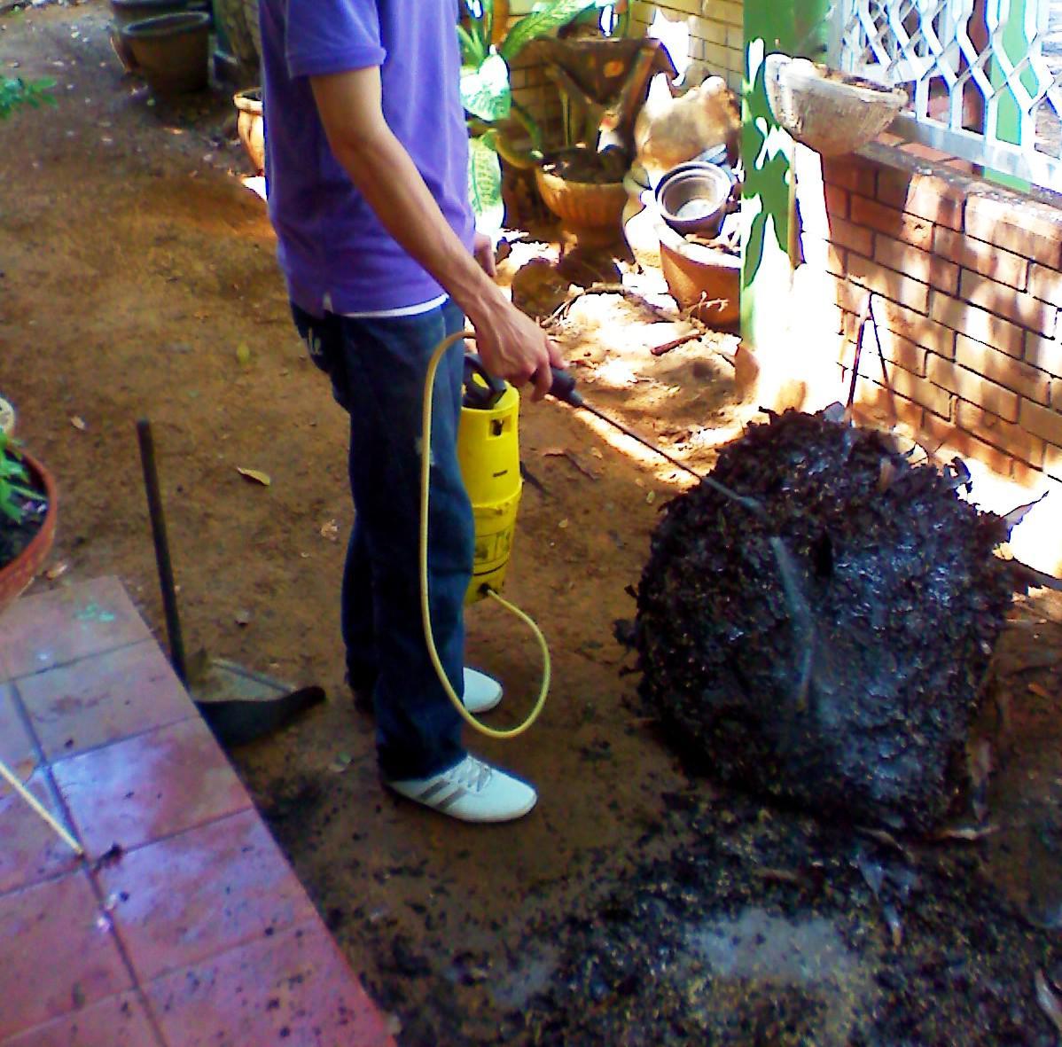 Expertos en Fumigación Residencial Servicio en Maracaibo
