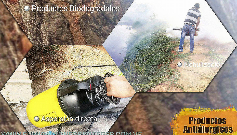 Fumigación Total contra Plaga Insecto Roedor Maracaibo