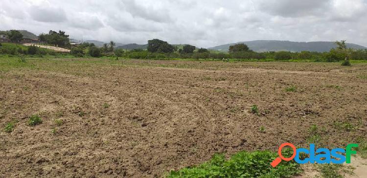 Se vende Terreno Municipio Peña RAH: 20-1925