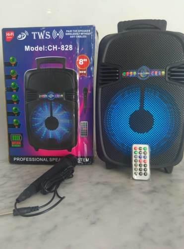 Corneta Bluetooth Inalámbrica Amplificada Modelo: Ch-828