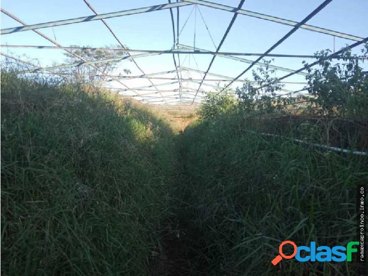 Finca de 8 Hectareas entre Cagua y Villa de Cura