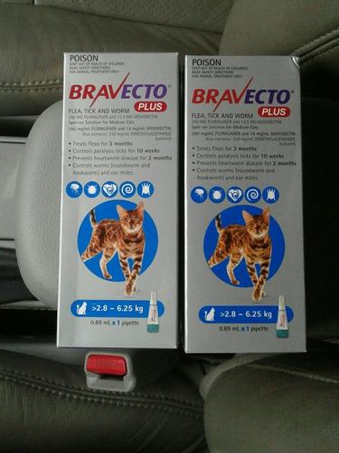 Bravecto Plus Antipulgas Y Antigarrapatas Para Gatos