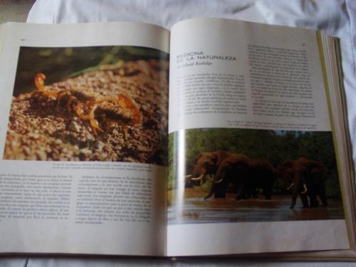 Bello Libro Meravillas Y Misterios Del Mundo Animal