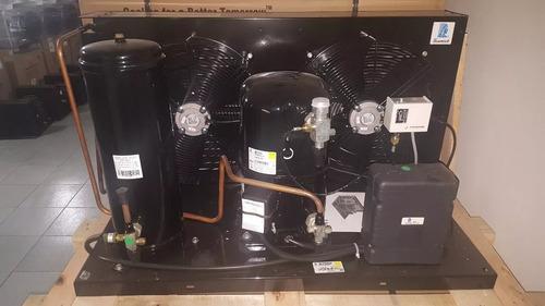 Unidad Condensadora 5 Hp Tecumseh Frances Rv 3f