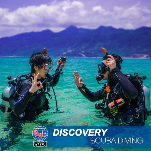 Padi Discovery Scuba Diving Curso De Buceo