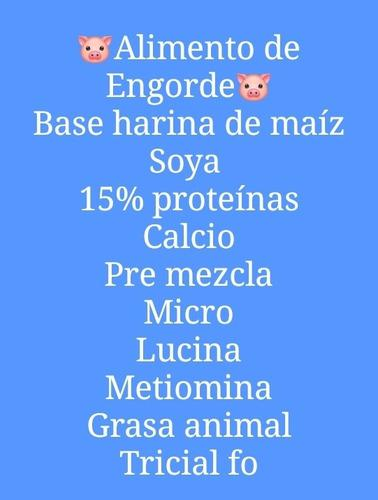 Se Vende Alimento De Engorde Para Cerdos